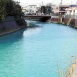 古綾瀬川 変色原因は?エメラルドグリーンは化学工場による汚染?