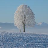 寒波予報2017年11月到来はいつ?東京から北海道までの予想!