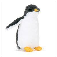 ペンギン 漢字表記が怖い!人鳥類とは?読み方や名前の由来も!
