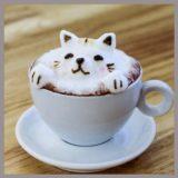 猫パルボウイルス感染症 人間に感染する?猫カフェはどこ?